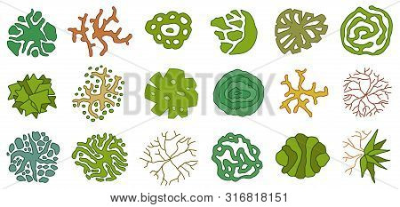 Trees Top View. Different Icon Of Plants And Trees For Architectural Or Landscape Plan. View From Ab