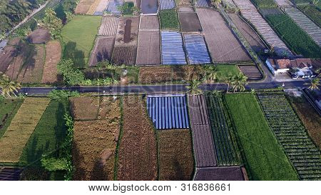 Terrace Of Fields In An Agrarian Country In Asia.aerial View Of Agriculture Area And Farm Land From