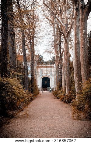 Central Alley In The Boboli Gardens Tuscany Italy.