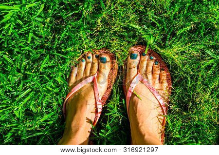 Close Up Of Bare Feet With Nails Painted Green Pink Sandal Flip Flops In Wet Green Grass
