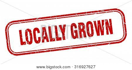 Locally Grown Stamp. Locally Grown Square Grunge Sign. Locally Grown