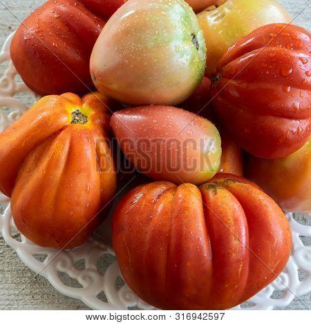 Raw Ripe Graden Tomatoes On Wooden Background. Vegetarian Ingredients, Seasonal Produce.
