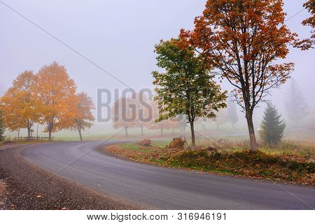 Road Winding Through Fog In Autumn. Beautiful Fall Scenery With Trees In Colorful Foliage. Amazing O