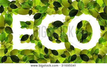 Eco - vector word made from fresh green leafs