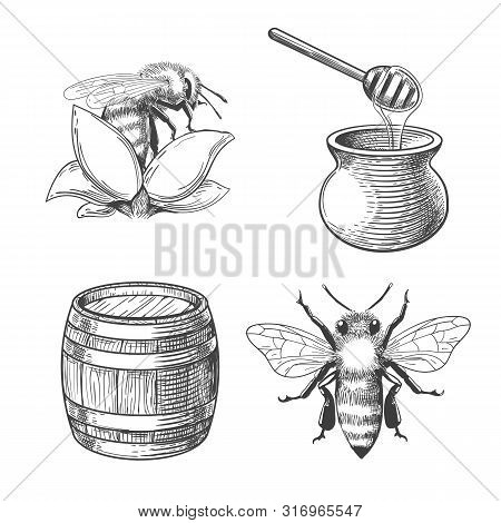 Honey Pot And Flower, Barrel And Bee Engravings. Beekeeping And Flight Keeping Etching Elements, Han
