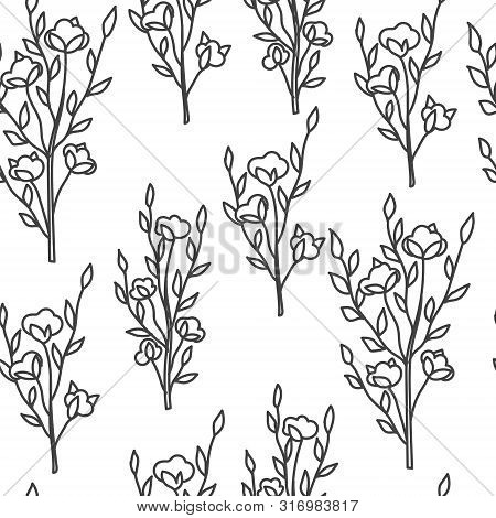 Cotton Bolls And Branches Floral Seamless Pattern. Flower Black And White Background For Wrapping, L