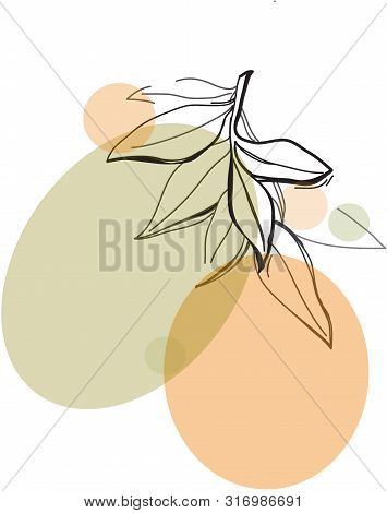One Line Drawing  Leafs. Modern Single Line Art, Aesthetic Contour. Perfect For Home Decor Such As P