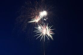 Bright Beautiful Colorful Firework. Colored Firework Lights In The Night Sky. New Year Holiday Firew