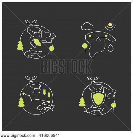 Biodiversity Chalk Icons Set. Ecosystem Balance, Protection, Loss. Biodiversity Concept. Isolated Ve
