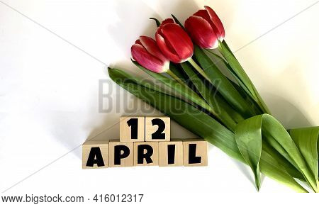 April 12.april 12 On Wooden Cubes.next To It Is A Bouquet Of Red Tulips On A White Background.calend