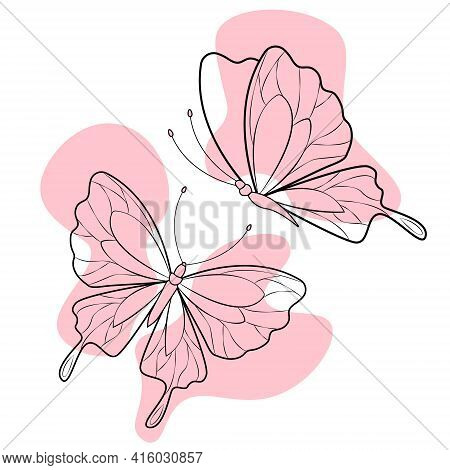 Set Of Butterflies Without Fill Isolated On White Background For A Logo Or Decorative Element. Vecto