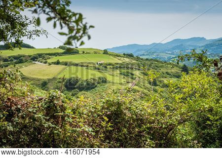 Green Meadow In Mountain. Composition Of Nature