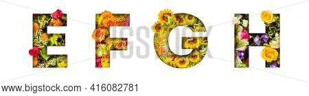 Floral letters. The letters E, F, G, H are made from colorful flower photos. A collection of wonderful flora letters for unique spring decorations and various creation ideas