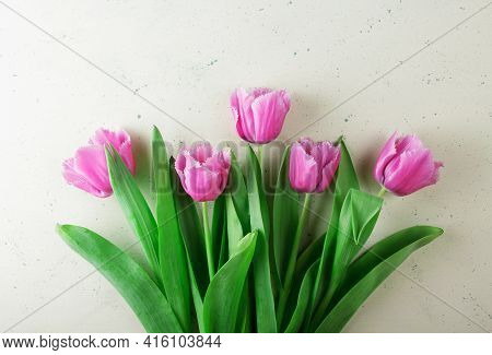Top View. Fresh Beautiful Pink Tulips With Fringe On Light Background
