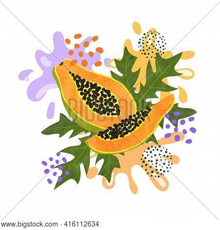Papaya Fruit Vector Illustration. Abstract Juicy Fruit Splash