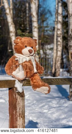 A Soft Toy Teddy Bear In A Knitted Scarf Sits On A Wooden Fence In The Winter Forest On A Sunny Day.