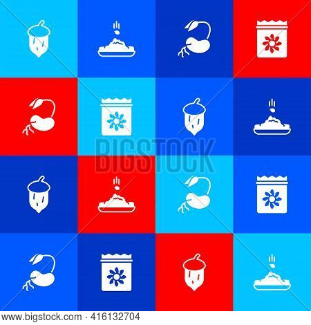 Set Acorn, Oak Nut, Seed, Seed, Sprout And Pack Full Of Seeds Of Plant Icon. Vector