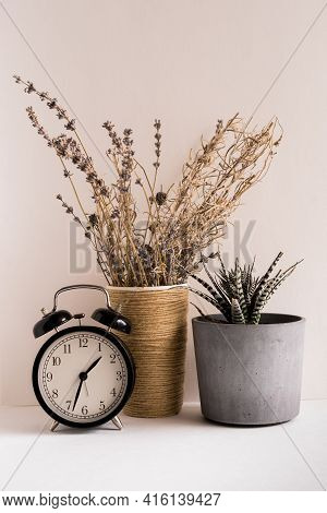 Close-up Of Potted Plant And Clock. Retro Clock.