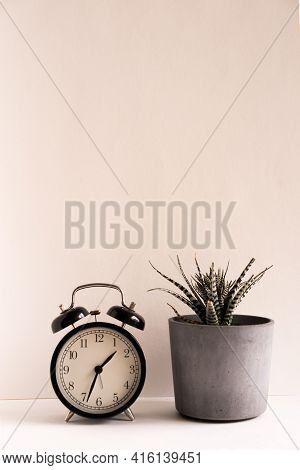 Close-up Of Potted Plant And Clock On Table At Home