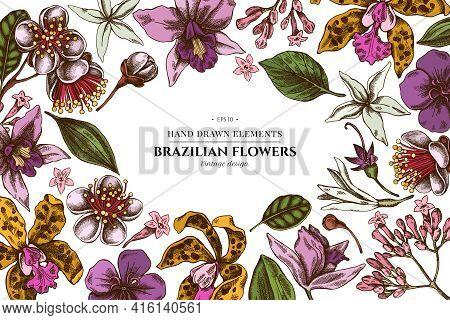 Floral Design With Colored Laelia, Feijoa Flowers, Glory Bush, Papilio Torquatus, Cinchona, Cattleya