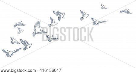 Flying Pigeons, Hand Drawn, Line Art. Vector Illustration