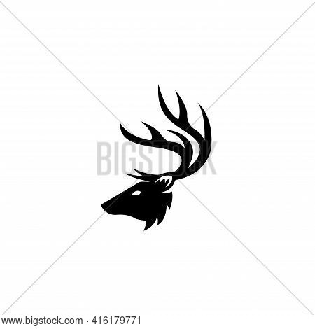 Deer Head Creative Design Logo Vector. Deer Illustration