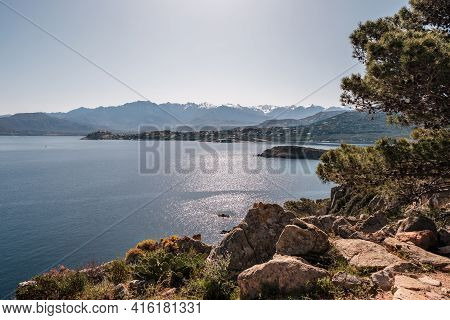 The Bay Of Revellata In The Balagne Region Of Corsica With The Citadel Of Calvi And Snow Capped Moun
