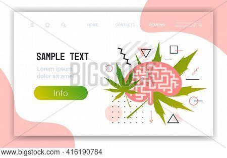 Human Brain With Cannabis Leaves Marijuana Legalization Drugs Consumption Addiction Concept Horizont