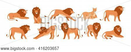 Set Of Lions, Lioness And Their Cub Resting, Lying, Standing, Roaring, Sitting And Walking. Jungle F