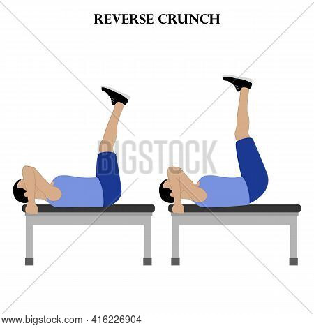 Reverse Crunch Exercise Workout Vector Illustration On The White Background. Vector Illustration