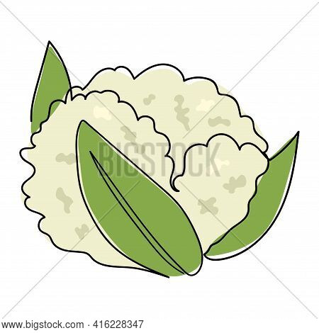 The Cauliflower Is Drawn With One Solid Line. Healthy Vegetable. The Object Is Drawn With A Single L