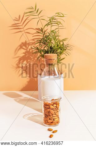 Veggies Composition With Bottle Of No Lactose Almond Milk, Almond Nuts And House Plant. Healthy Vega