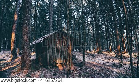 Beautiful Cool Scene Of A Small Wooden Hut In A Forest Illuminated By The Sun's Rays. Soothing Scene