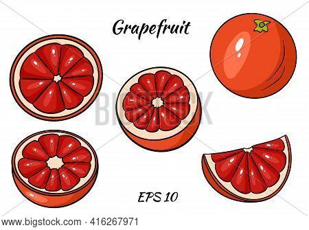A Set Of Juicy Grapefruit. Grapefruit, Whole And Half Cut. Cartoon Style. Set Isolated On White Back