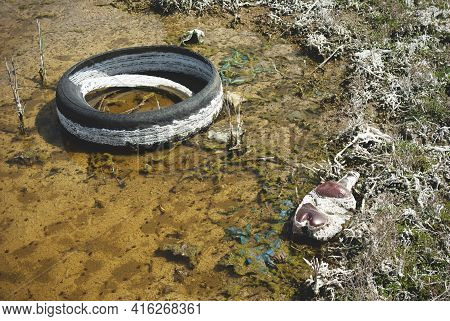 A Thrown Away Tire In A Puddle. A Puddle Polluted With Chemicals And Garbage.