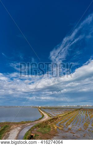 Flooded Rice Fields And Road In Albufera, Valencia