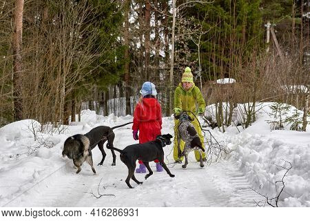 Mom And Daughter Protect Themselves From Stray Dogs In Winter Forest