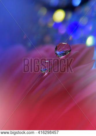 Beautiful macro shot of magic flowers.Border art design. Magic light.Extreme close up macro photography.Conceptual abstract image.Violet and Pink Background.Fantasy Art.Creative Wallpaper.Beautiful Nature Background.Amazing Spring Flowers.Water drop.