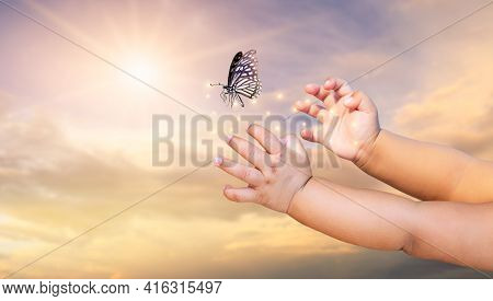 The Small Child Frees The Butterfly From  Moment Concept Of Freedom