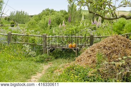 Idyllic Overgrown Allotment Garden With Hay Stack And Fence