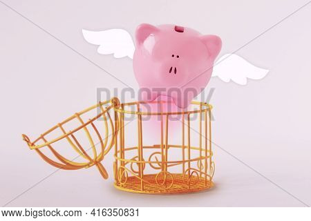Opened Bird Cage With Escaping Piggy Bank - Concept Of Economy And Savings