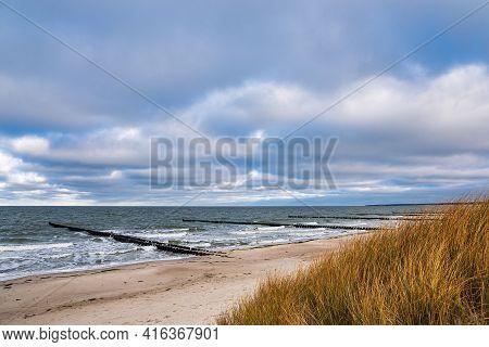 Groynes And Dune On Shore Of The Baltic Sea In Ahrenshoop, Germany.