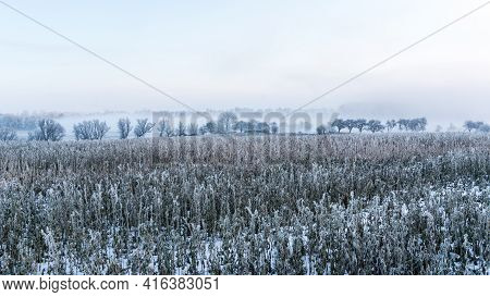 Winterly Landscape Covered With Hoarfrost And With Fog In Background