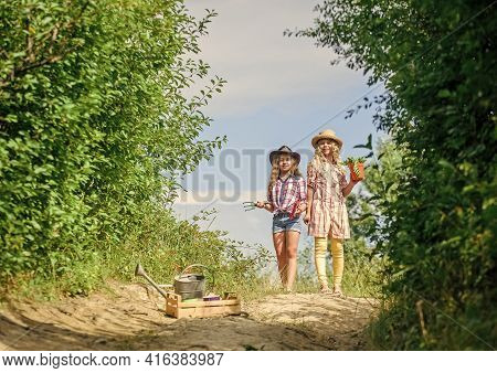 Kids Siblings Having Fun At Farm. Eco Farming Concept. Girls With Gardening Tools. Sisters Helping A