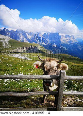 Beautiful Landscape In Dolomite National Park, Unesco World Heritage, Trentino Alto Adige, Italy