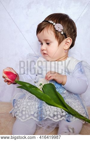 Cute Baby Girl In Blue Dress Holding Tulip. Holiday Card For Mothers Or Fathers Day Greeting. Portra