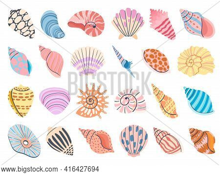 Tropical Seashell. Cartoon Clam, Oyster And Scallop Shells. Colorful Underwater Conches Of Mollusk A
