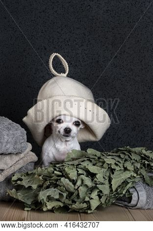 A Chihuahua In A Bath Cap On His Head Sits By A Stack Of Large Towels, And Next To It Lies An Oak Ba