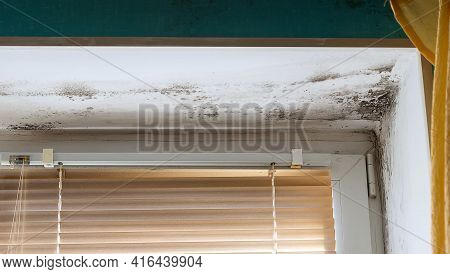 Mold In The Corner Of The Plastic Windows In The House. Spores Of Black Mold And Fungus On The Wall