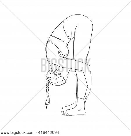 Flexible Yogi Woman. Hatha Yoga Forward Fold Pose. Engraved Vector Illustration In White Background